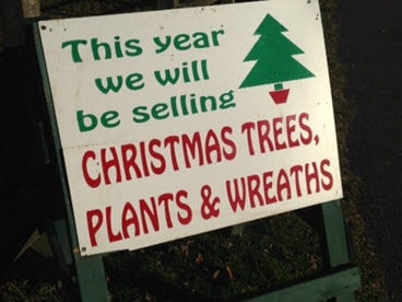 Our Christmas sign by the road
