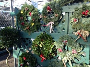 Handmade Christmas Wreaths at Woolpit Nurseries