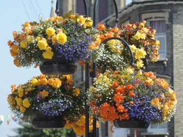 Bury In Bloom floral baskets near the Cathedral in Bury St Edmunds.