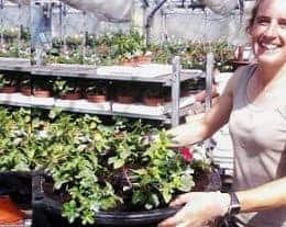 Catherine planting baskets for In Bloom supplier