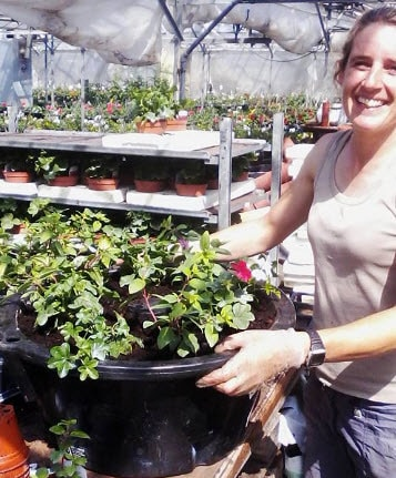 Catherine planting hanging baskets, Woolpit Nurseries