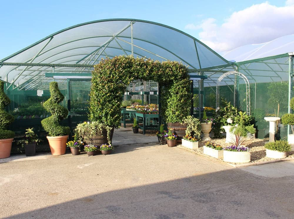 Hardy plant center for perennials, shrubs, trees at Woolpit Nurseries
