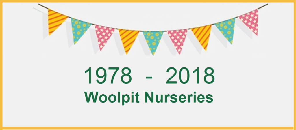 About Woolpit Nurseries 40 years in business