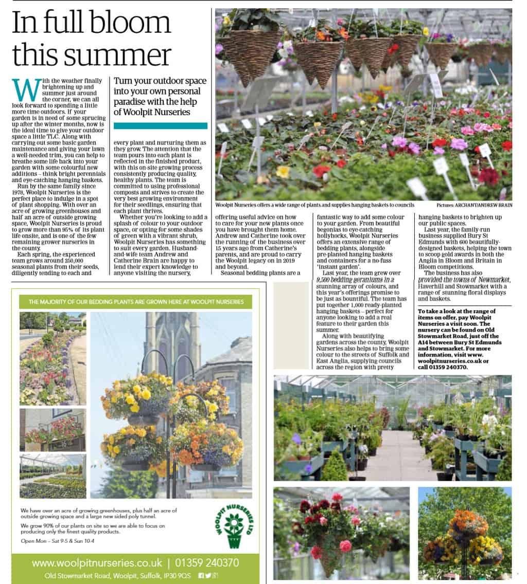 Article on Woolpit Nurseries, West Suffolk Mercury, EADT
